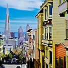 PAINTED LADIES LOOKING DOWN ON YOUNG STUDS by Thomas Barker-Detwiler