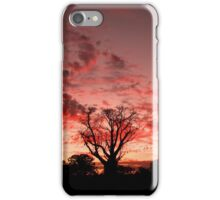 Boab and Pink Cloudy Sunset iPhone Case/Skin