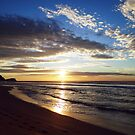 A New Day -  Avoca Beach by Of Land and Ocean - Samantha Goode