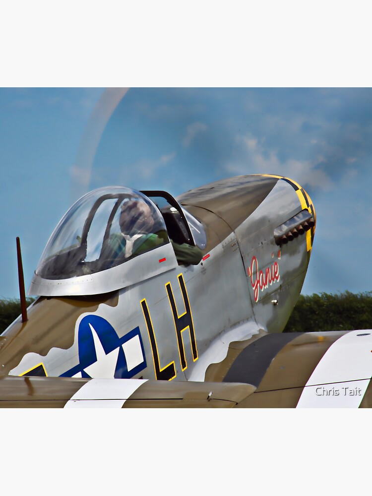 P-51D Mustang 'Janie' by christait