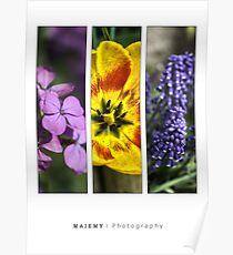 Flower triptych Poster