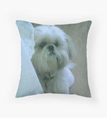 shih tzu throw pillow  Throw Pillow