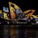 Vivid 2016 Opera House  44 by Jane Holloway