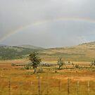 Patagonian Rainbow by Graeme  Hyde