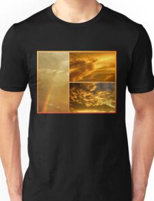 The Dragon and the Phoenix after the rain T-Shirt
