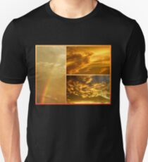 The Dragon and the Phoenix after the rain Unisex T-Shirt