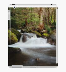 Taggerty Cascades, Marysville, Victoria iPad Case/Skin