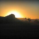 Boggabri Sunset by mewalsh