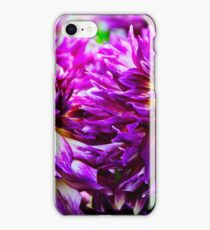Purple Dahlias iPhone Case/Skin