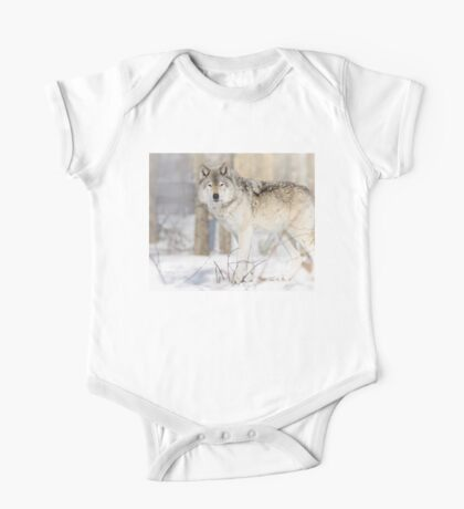 Stare - Timber Wolf Kids Clothes