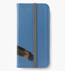 Stationary Hover iPhone Wallet/Case/Skin