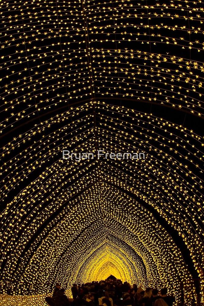 Cathedral of Light - Vivid Sydney by Bryan Freeman