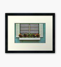 The Window Box Neighbor  Framed Print