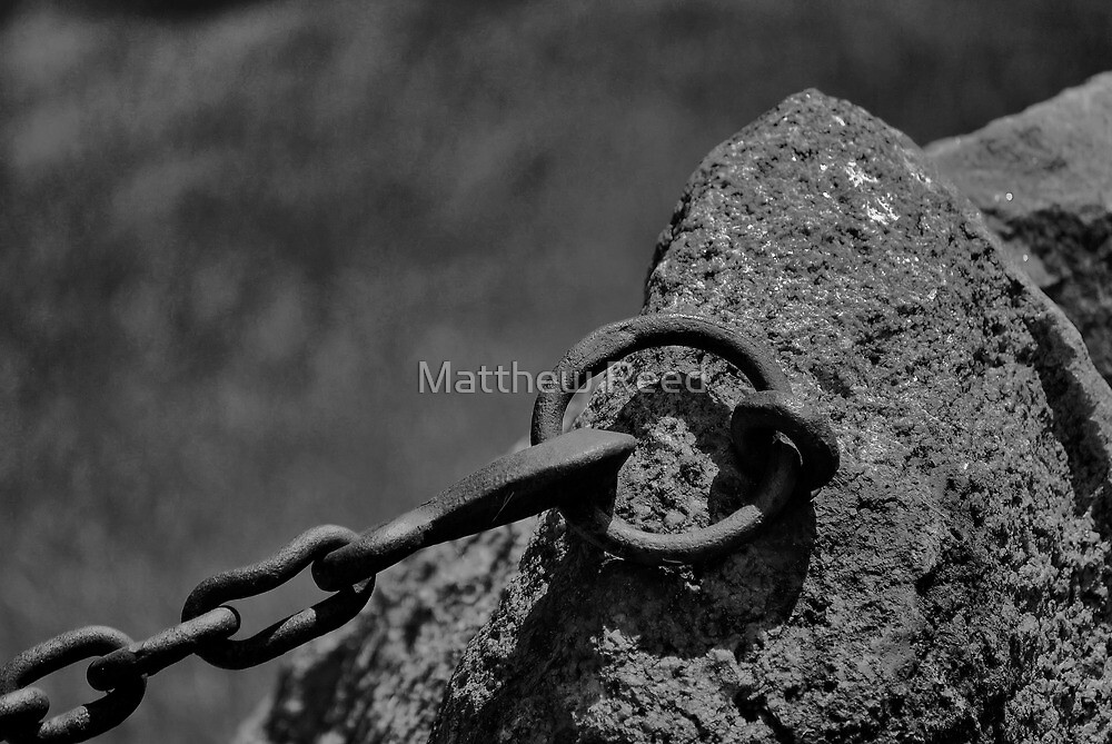 finally grounded by Matthew Reed