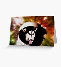 Husky In Space Greeting Card