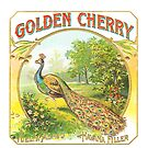 Golden Cherry Vintage Fruit Crate Label by pjwuebker