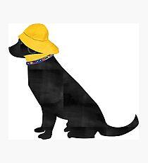 Nautical Preppy Black Lab Salty Dog Photographic Print