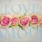 Love Amour by audah