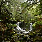 Mt Field Tasmania by Kylie Reid