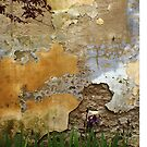 Textures to Tempt by Susan Moss