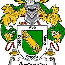 Andrade Coat of Arms/ Andrade Family Crest by William Martin