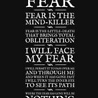 Litany Against Fear by Robert Partridge