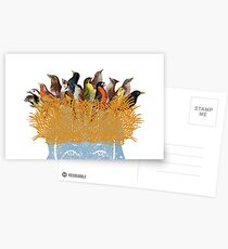 Bird nest head Postcards