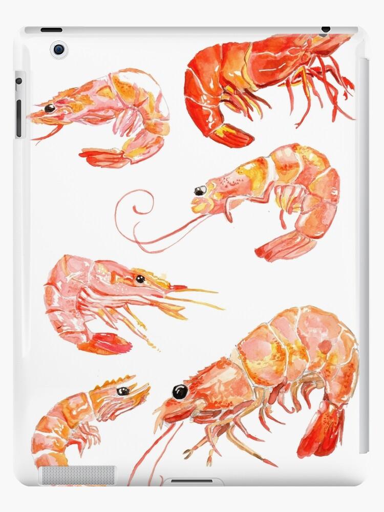 'shrimp' iPad Case/Skin by GravezInk