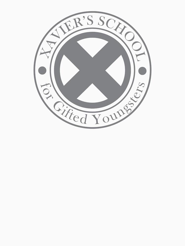 Xavier's School by silvrock