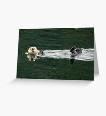 Sea Otter On It's Back - Alaska, United States Greeting Card