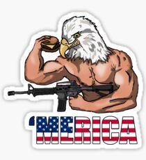 Amérique Sticker