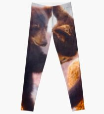 Dancing Bears Leggings