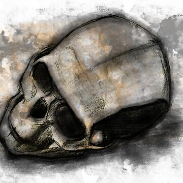 Charcoal skull by Kneedeepdesign