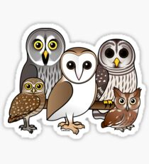 Five Cute Owls by Birdorable Sticker