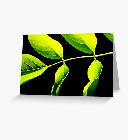 Lime Green on Black Greeting Card