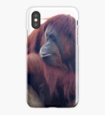 Orangutan - Color Version iPhone Case/Skin