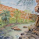 Amalia Gorge, El Questro, Kimberly by Virginia  Coghill