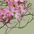PINK FLOWERING DOGWOOD by Shirley Kathan-Sayess