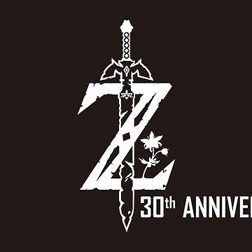 Zelda: Breath of the Wild Shirt by PippyThePirate