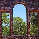 «Nature's Window» de Paulette1021