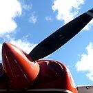 Propeller by Jess Meacham