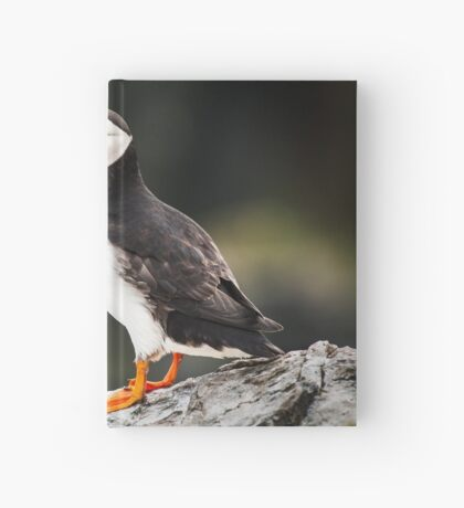Puffin with Sandeels Hardcover Journal