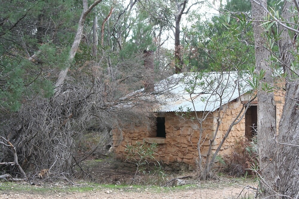 Cottage in the Bush by Leanne Davis