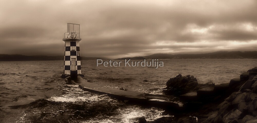 Winter Melancholy At Point Halswell  by Peter Kurdulija