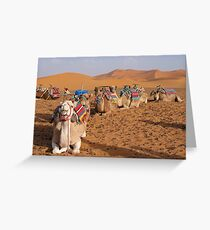 Camel Train Greeting Card