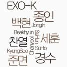 EXO-K by Twinklekaur05