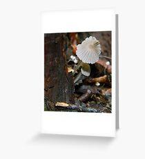 Fungi 2 Greeting Card