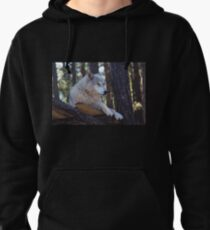 Timber Wolf Sentinel Pullover Hoodie