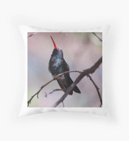 Broadbill hummingbird singing Throw Pillow