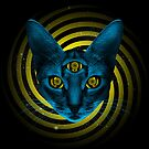 Hypno Cat by JoeConde